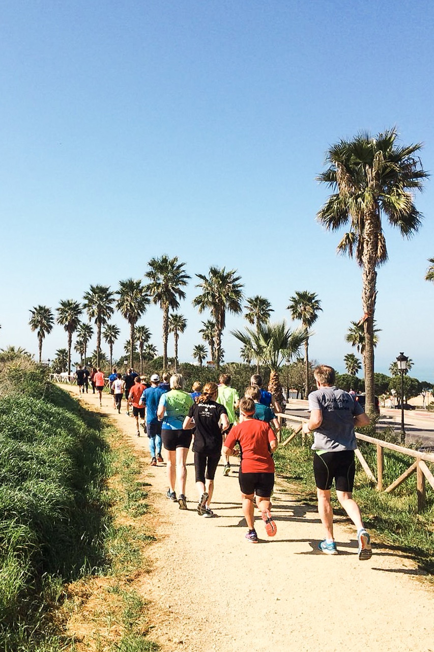 running group are running next to palms and a blue sky